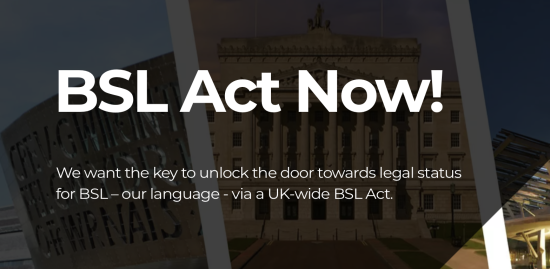 Image shows white text on a dark background. The text reads 'BSL Act Now'